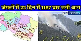 सेटेलाइट चित्रों से सामने आया, उत्तराखंड के जंगलों में 22 दिन में 1187 बार लगी आग