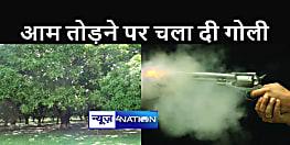 BIHAR NEWS : लोगों की जान से ज्यादा कीमती हो गया आम, तोड़ने पर चल गई गोली