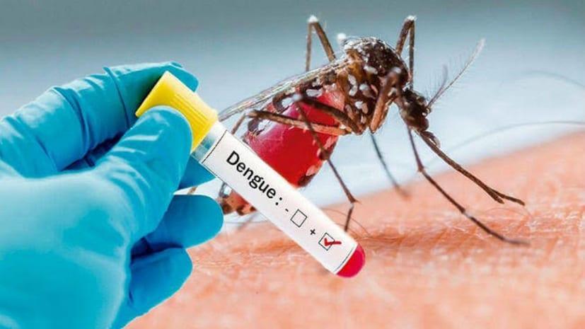 अब राजधानी पर डेंगू का हमला,3 दिन में 410 मरीज पहुंचे अस्पताल