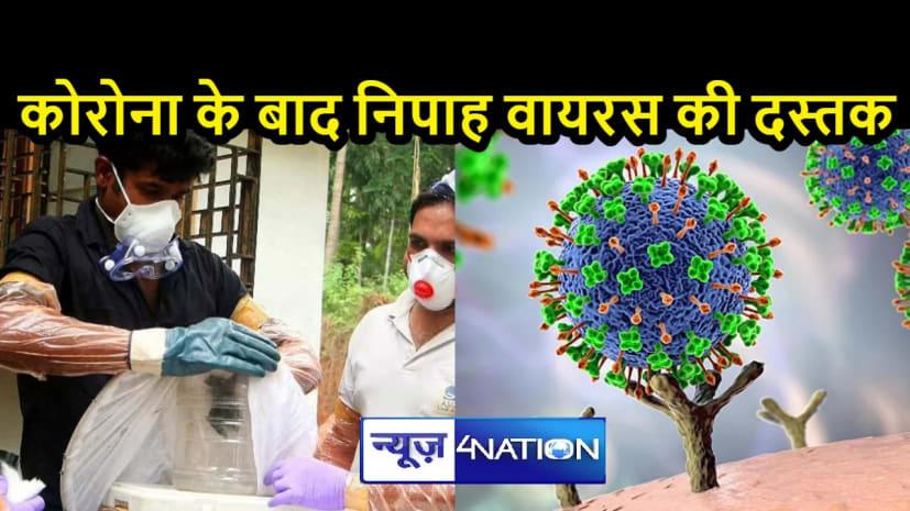 NATIONAL NEWS: देश के दक्षिणी राज्यों में नए वायरस की धमक से दहशत, केरल में पहले निपाह केस की पुष्टि