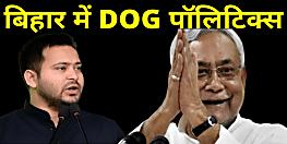 बिहार में अब DOG पॉलिटिक्स, राजद ने जेडीयू के 5 नेताओं को बताया सीएम नीतीश का पालतू कुत्ता