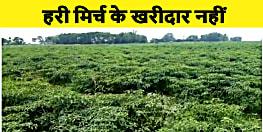 बिहार में किसानों की हालत दयनीय, नालंदा में आँखों में आँसू ला रहा है प्याज़ तो जिंदगी तीखी कर रही है हरी मिर्च