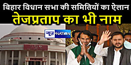 बिहार विधान सभा की बनीं 22 समितियां, BJP को सबसे ज्यादा, तो तेज प्रताप यादव इस समिति के बने सभापति...