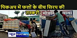 Bihar : पिकअप में तहखाना बनाकर हो रही कफ सिरफ की तस्करी, इस तरह आए पुलिस की पकड़ में