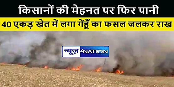 किसानों के महीनों की मेहनत पर फिरा पानी, 40 एकड़ खेत में लगी गेंहू की फसल जलकर हुई राख