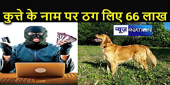 15 हजार के कुत्ते के लिए चुका दिए 66 लाख रुपए, फिर भी रहे खाली हाथ