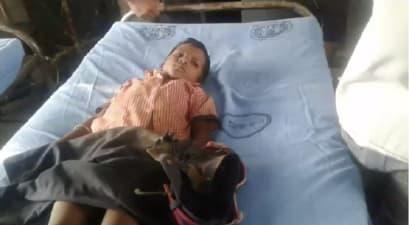 गया में पलटा छात्रों से भरा टेम्पू, आठ बच्चे जख्मी, अस्पताल में चल रहा है इलाज