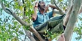 लॉकडाउन में अपने गांव में पेड़ पर चढ़कर बात करता था ये अंपायर, अब घर घर पहुंचाया नेटवर्क