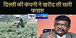 सही दाम नहीं मिलने पर गोभी के खेत में चलाया था ट्रैक्टर, अब दिल्ली की कंपनी ने 10 रुपए प्रति किलो में खरीद ली सारी फसल