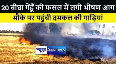 पटना में 20 बीघा गेंहूँ की फसल में लगी भीषण आग, मौके पर पहुंची दमकल की गाड़ियां