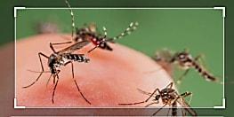 पटना के इस इलाके में डेंगू ने तेजी से पसारे पांव, सारण और शेखपुरा जिला में भी मिले मरीज