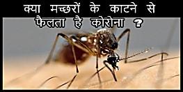 मच्छरों के काटने से फैलता है कोरोना वायरस ?, इस पर आ गई नई रिसर्च रिपोर्ट, जरूर देखें...