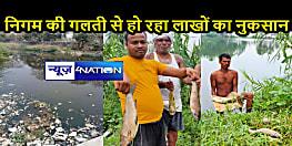 जहरीली बनी मत्स्य पालन योजनाः नगर निगम की लापरवाही से मछली पालकों की टूटी कमर, मछलियों के मरने से हो रहा आर्थिक नुकसान