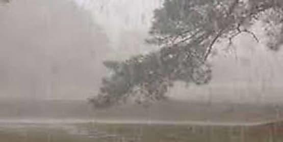 मौसम विभाग ने जारी किया अलर्ट,बिहार के इन जिलों में 2 से 3 घंटे में तेज हवाओं के साथ होगी बारिश