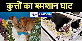 अब कुत्ते-बिल्ली का भी होगा अंतिम संस्कार, यह नगर निगम कर रही है देश के पहले श्मशान का निर्माण