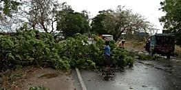 मौसम विभाग ने जारी किया अलर्ट, बिहार के इन जिलों में आंधी तूफान के साथ बारिश की संभावना