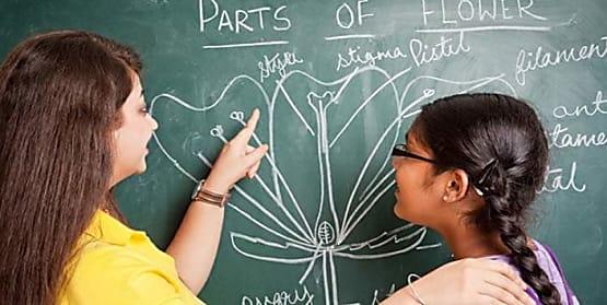 बिहार के नियोजित शिक्षकों के वरीयता का हुआ निर्धारण, जानिए कौन शिक्षक होंगे वरीय
