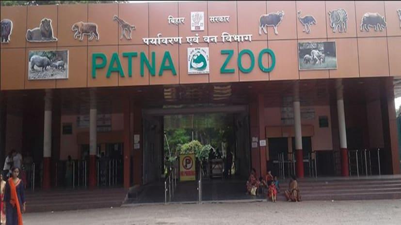 पटना ज़ू के खुलने की बढ़ी संभावना, भोपाल से आई निगेटिव रिपोर्ट