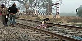 रेलवे ट्रैक पर पड़े शव को खाते रहे कुत्ते, रेलवे ने नहीं ली सुध