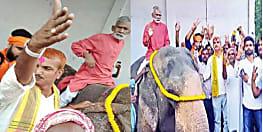 निर्दलीय ब्यास सिंह की जीत पर गदगद हैं नीतीश के विधायक,  हाथी पर सवार होकर निकाला जुलूस,  अब अपने विधायक पर कार्रवाई करेगी जदयू ?