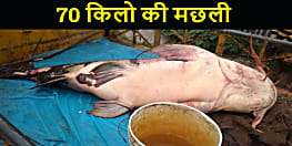 कुदरत का करिश्मा : कोसी की धार में मछुआरे ने पकड़ी 70 किलो की मछली