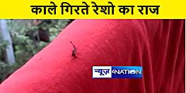 पटना में अचानक गिरने लगे काले रेशे, लोगों ने जताई तरह तरह की आशंका