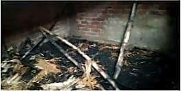 शार्ट सर्किट से घर में लगी आग, मवेशी की जलने से हुई मौत