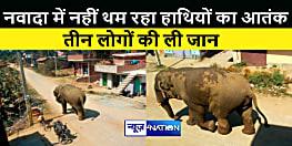 नवादा में नहीं थम रहा हाथियों का आतंक, तीन लोगों की ली जान, ग्रामीणों में दहशत