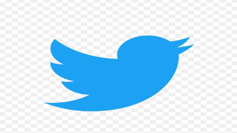 अफ़वाहों और झूठी ख़बरों पर रोक लगाने के लिए ट्विटर ने किया एक नया फीचर लांच