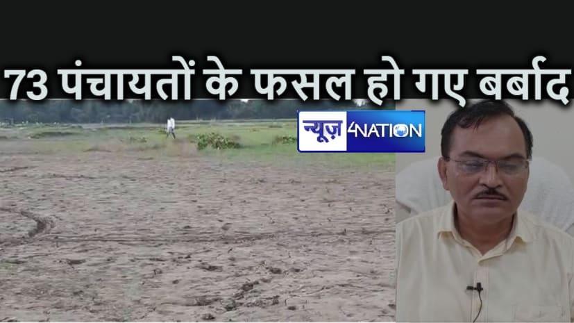 कटिहार के आठ प्रखंडों में 73 पंचायतों के फसल बाढ़ में हो गए बर्बाद, मुुआवजे के लिए कृषि विभाग ने मांगी 27 करोड़ की राशि