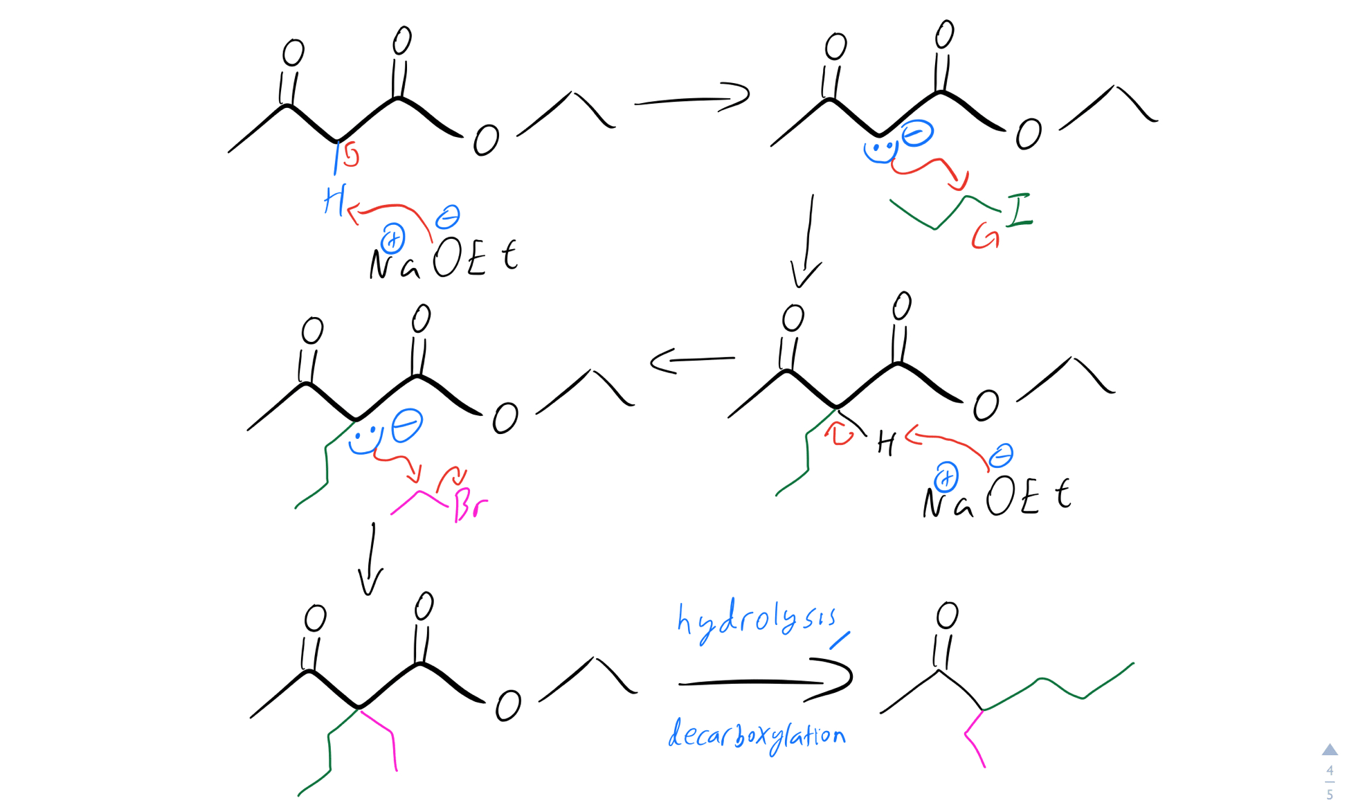 Double-alkylation-mechanism