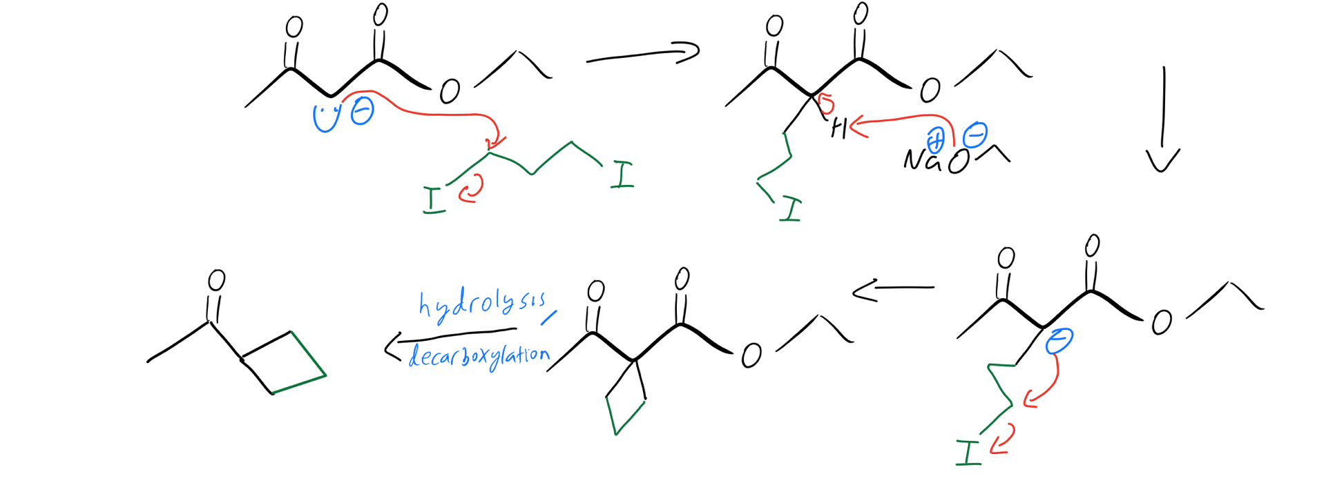 Cyclic-alkylation-mechanism