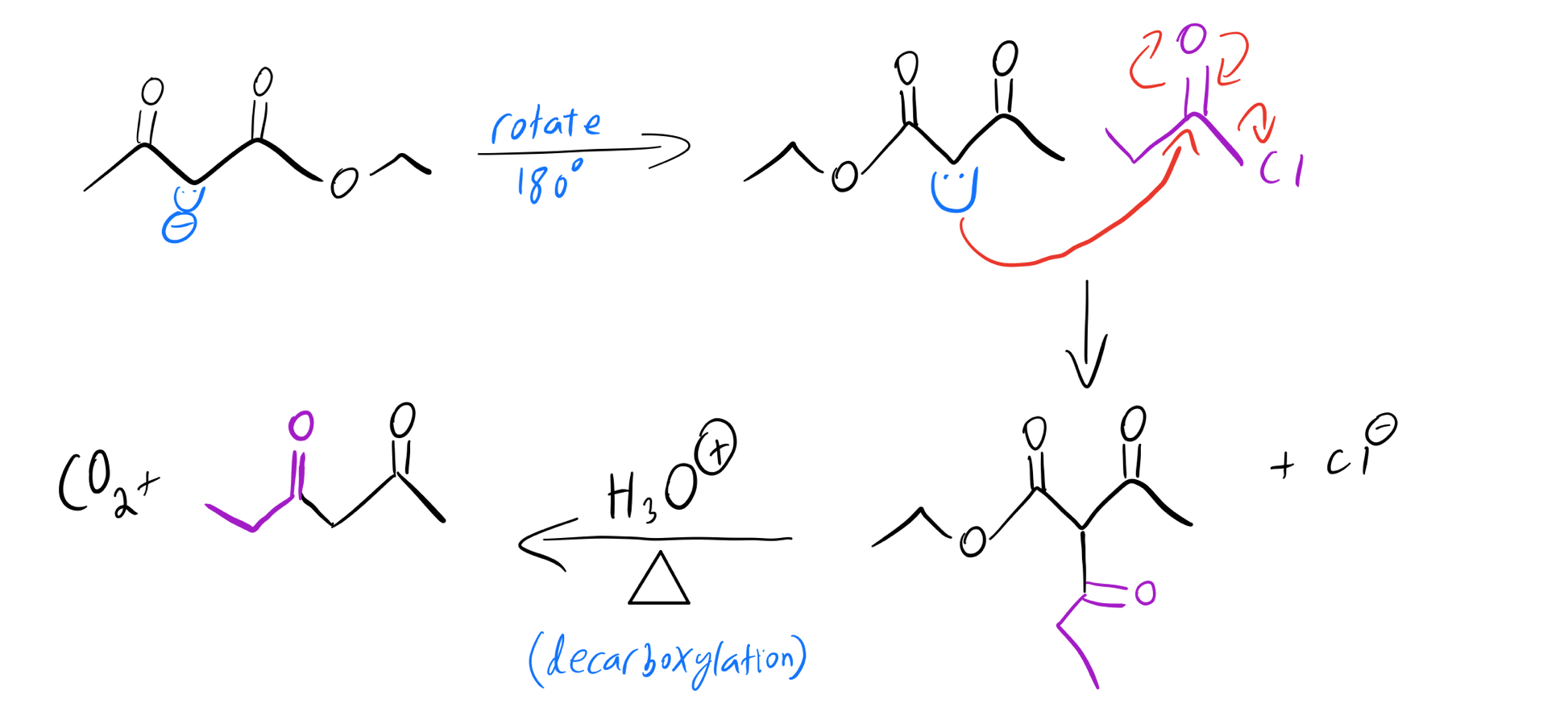 Enolate-acylation-mechanism