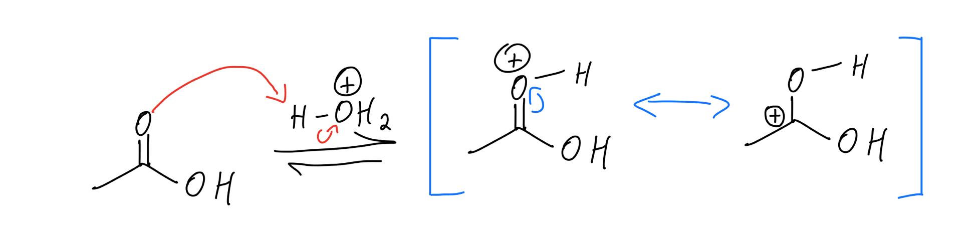 protonation