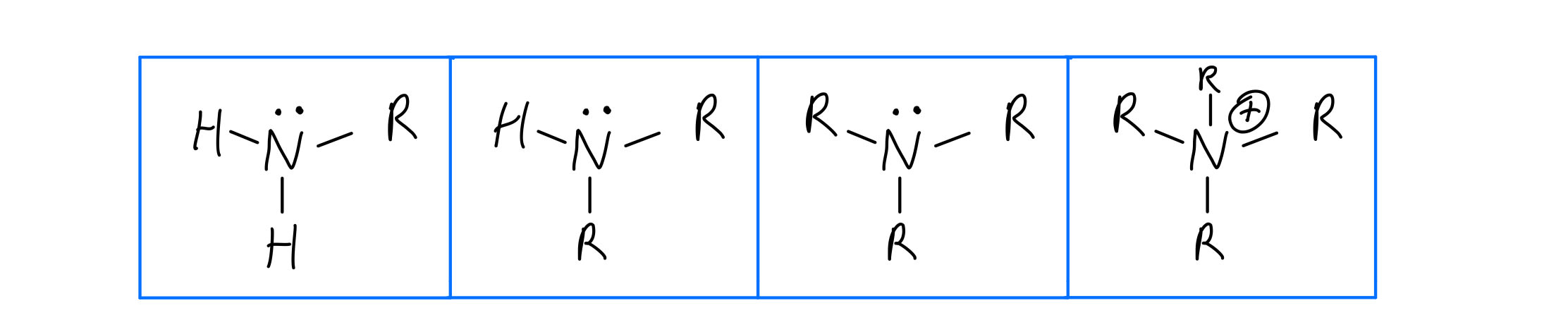 4 degrees of amine RNH2, R2NH, R3NH, R4N+