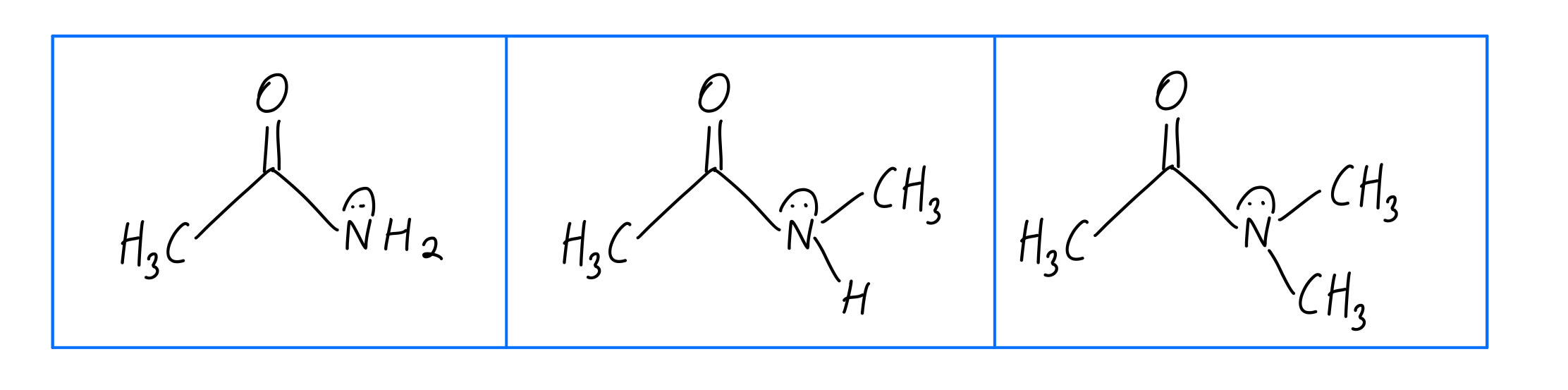 Amide Lewis structures