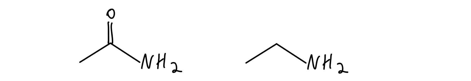 Amide vs amine
