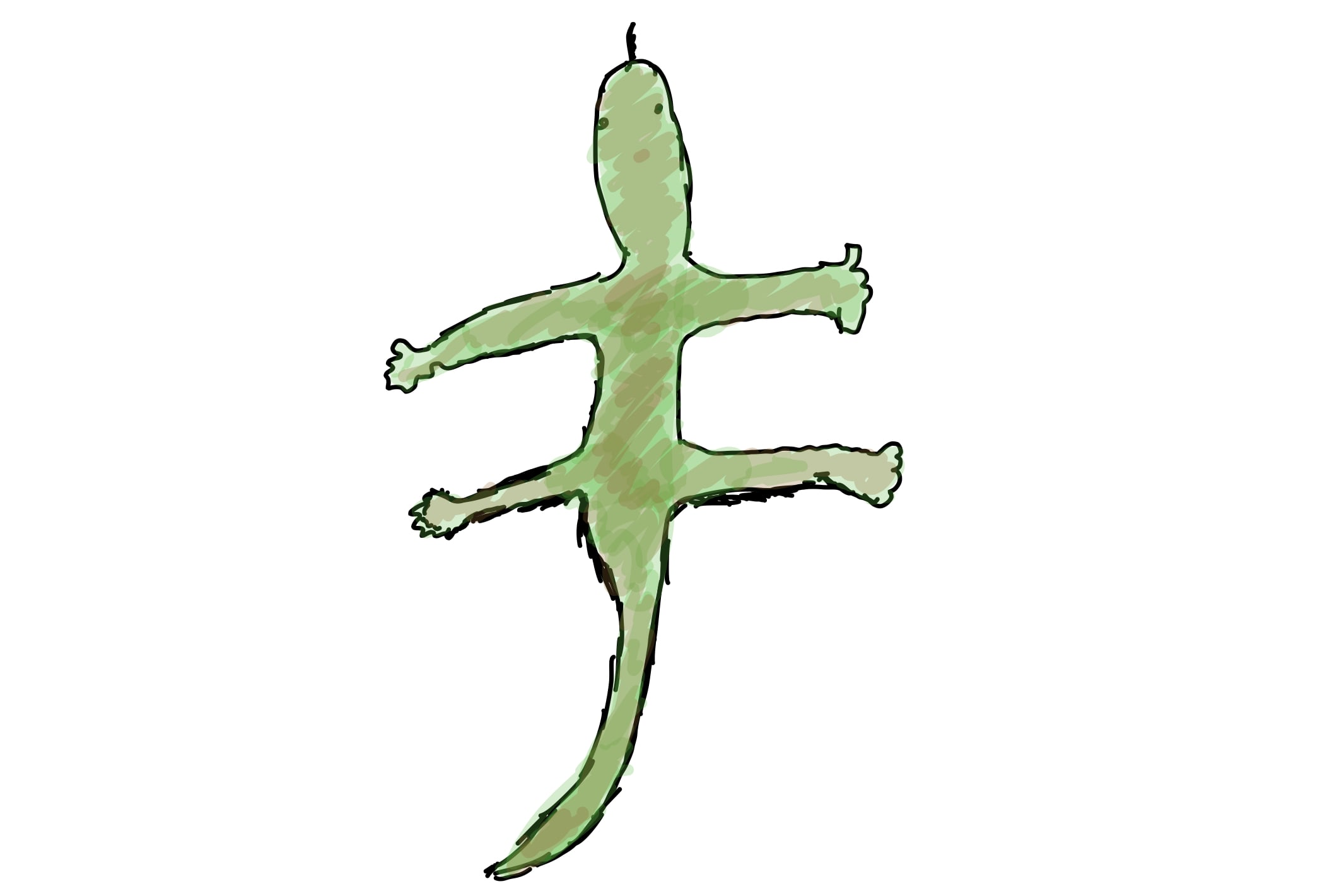Poorly drawn gecko
