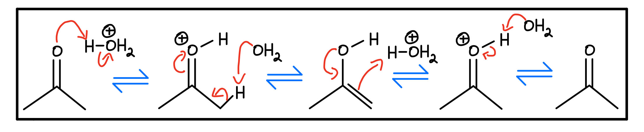 Acid-catalyzed mechanism