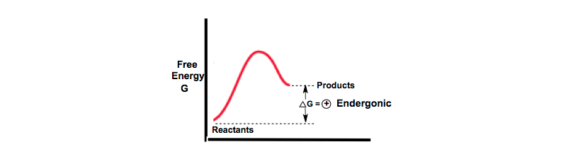 Endergonic-Energy-Diagram-thermodynamic-system-completely-reversible-work