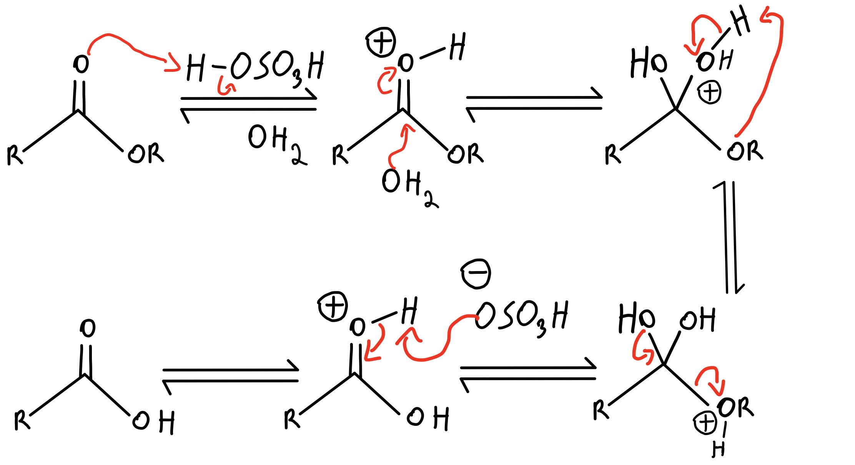 Acidic hydrolysis
