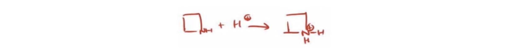 Protonated Amine