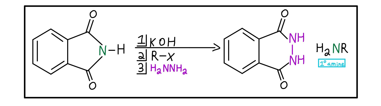 Gabriel synthesis summary