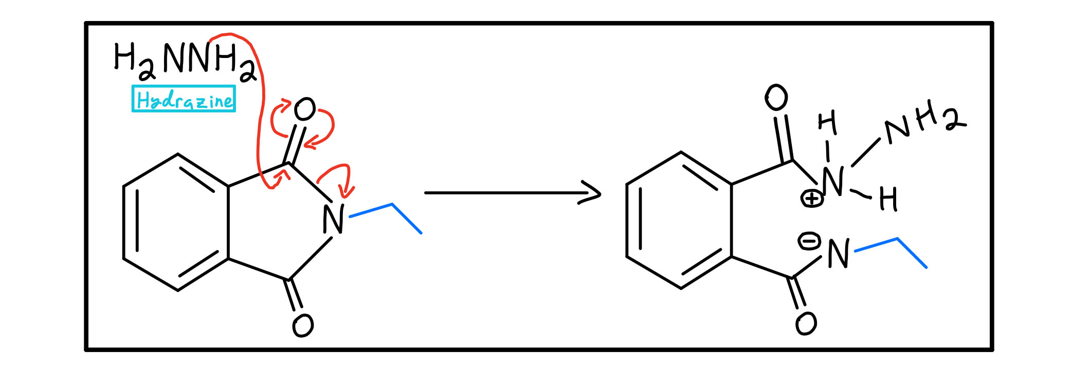 Hydrazine nucleophilic acyl substitution