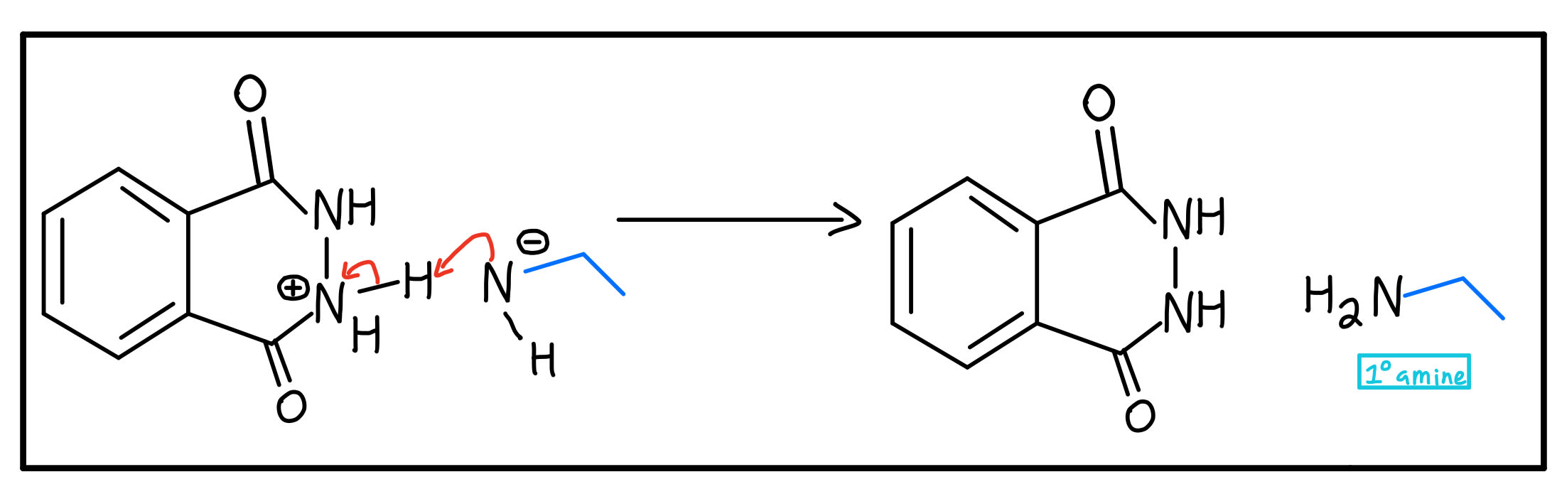 Primary amine formation