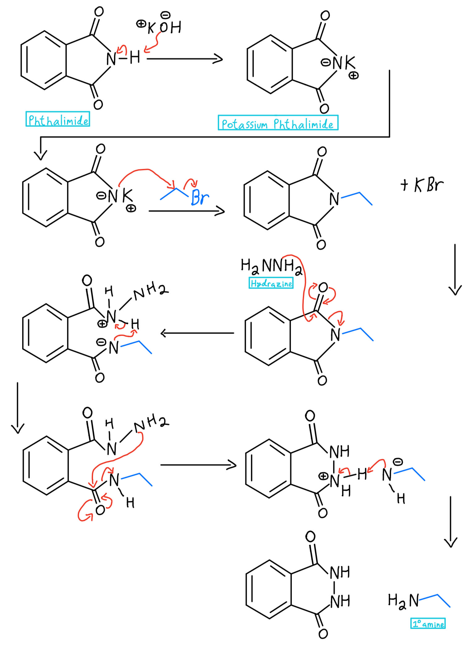 Hydrazine full mechanism