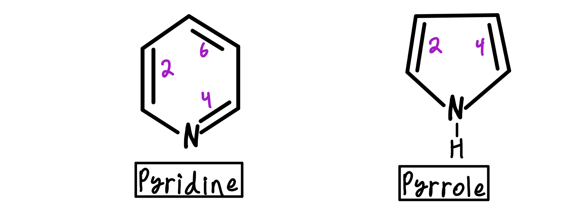Pyridine and pyrrole