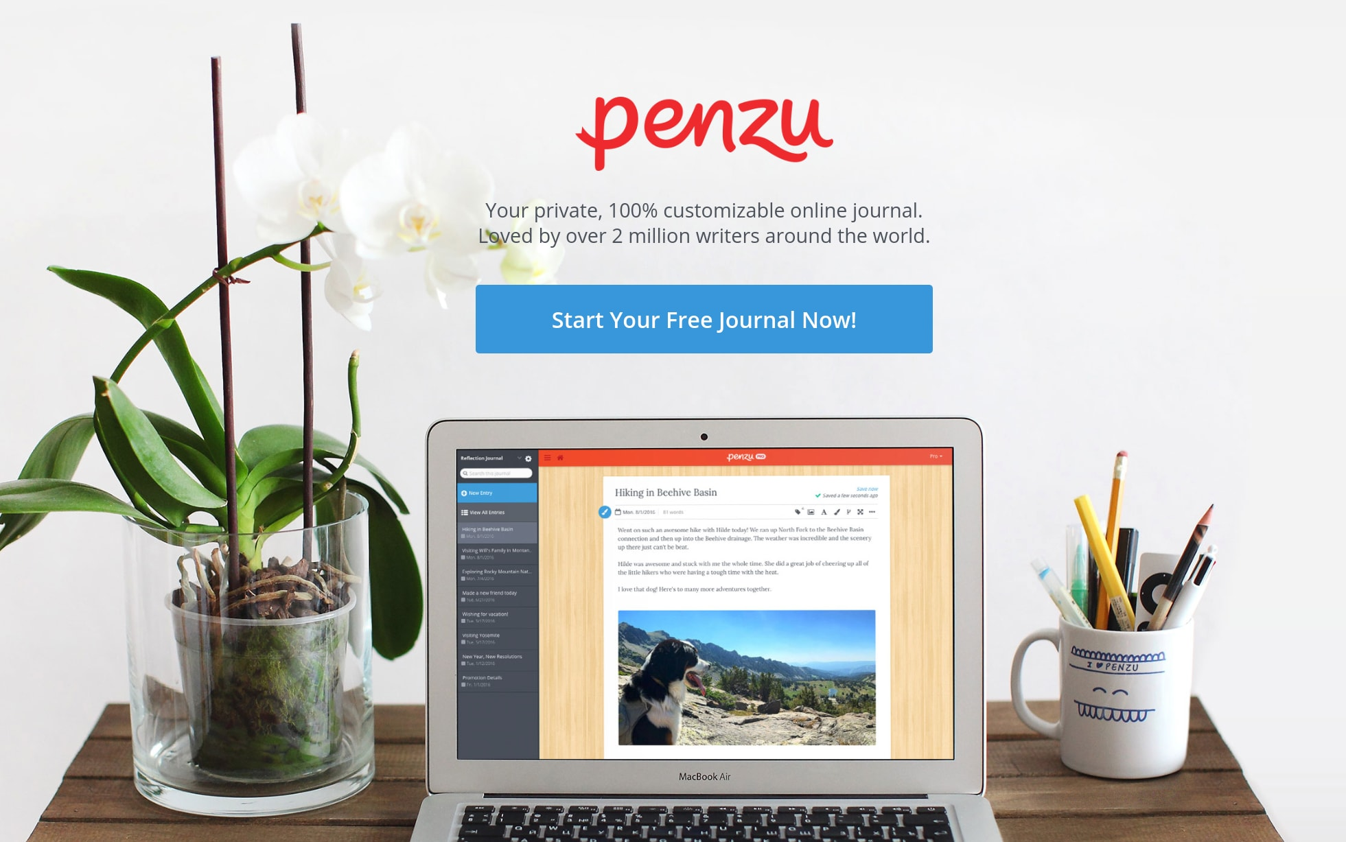 Penzu Review