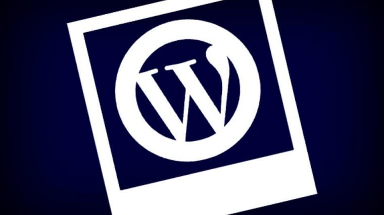 Which CMS make up the WordPress Competition?