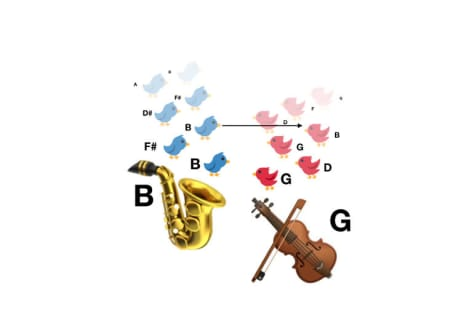 8. Wind and string instruments have more flexibility when it comes to where they place every note.